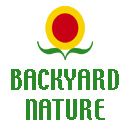 backyardnature.com is   backyard nature,  backyard wildlife,   and green business for consumers